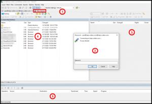 WinSCP and its Options
