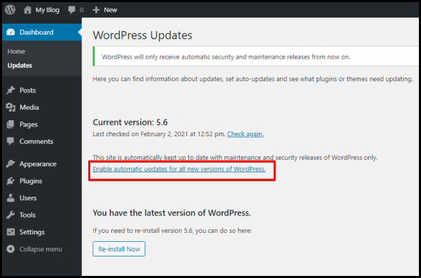 Enable Auto Update Option in WordPress Dashboard