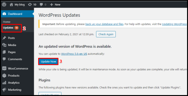 WordPress Update Now Button