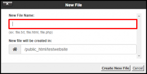 Enter File Name in cPanel File Manager