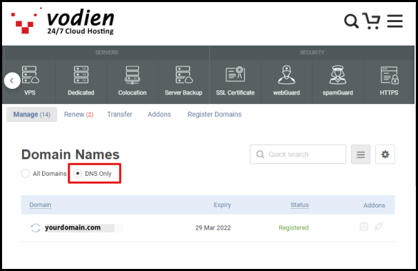 DNS Only Button in Vodien Domains Page
